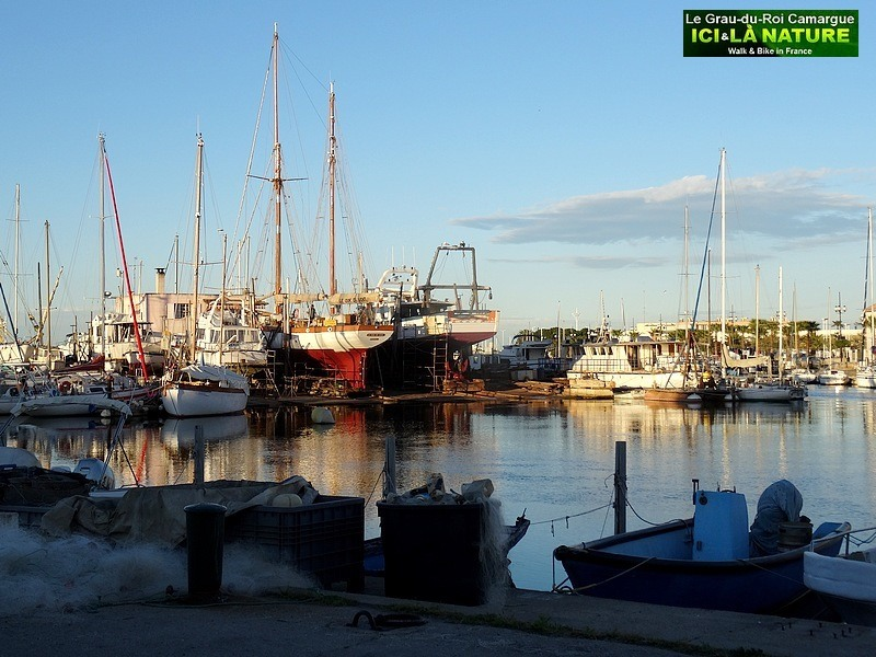 21-walking-tours-in-france-camargue