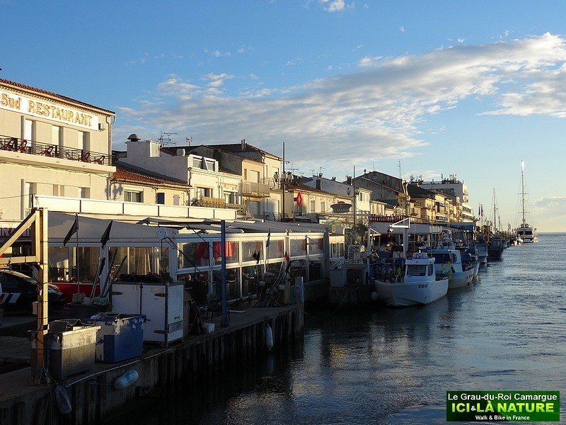 22-holidays-in-france-camargue