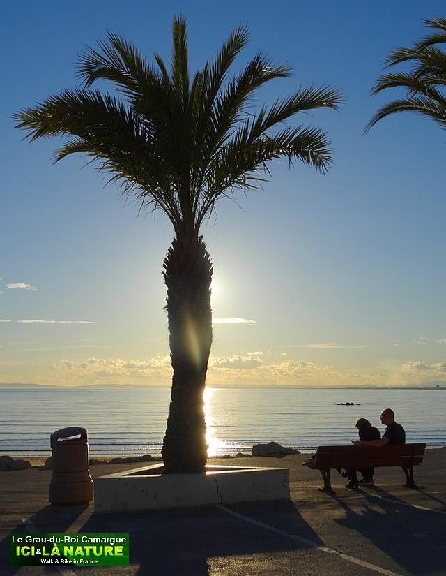 26-amoureux-soleil-couchant-camargue