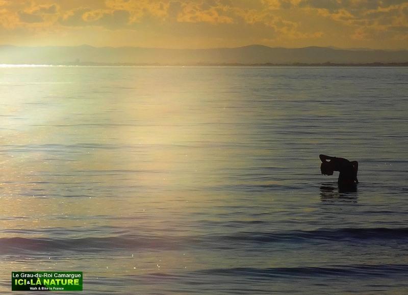 31-soleil-couchant-camargue