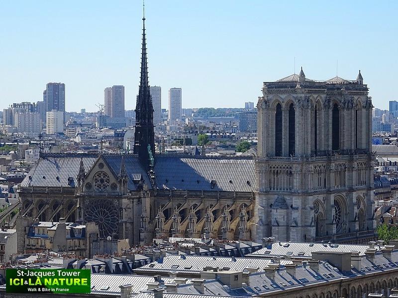 20-paris-cathedral-notre-dame-our-lady