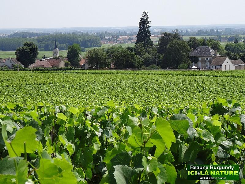 26-burgundy-tour-by-bike