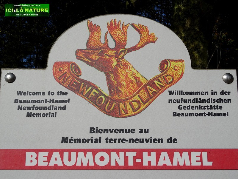 45-canadian-newfounland-memorial-world-war-1