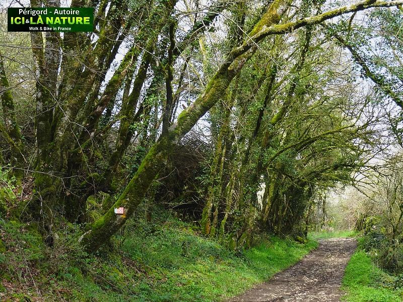 21-walk-tour-perigord-quercy