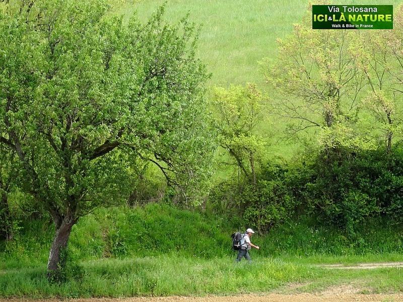 27-via-tolosana-arles-route