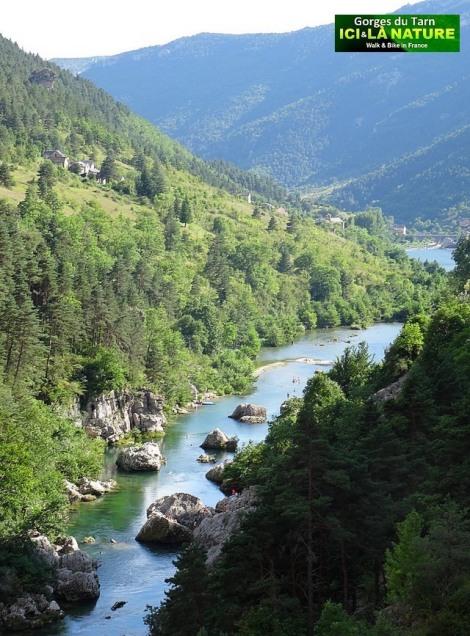 29-mountain-france-gorges-tarn
