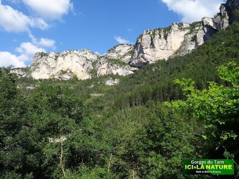 31-mountains-france-tarn