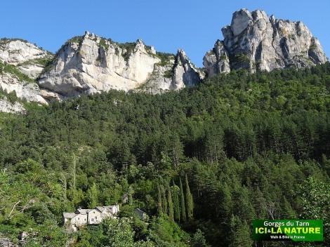 34-gorges-tarn-walk