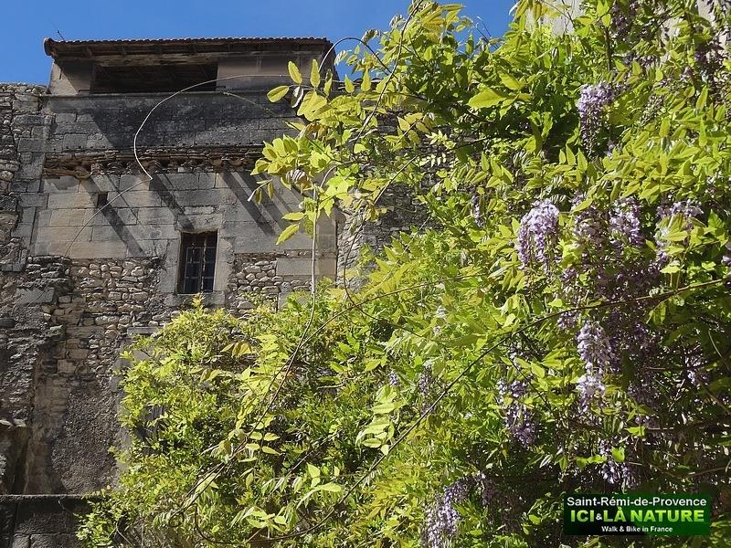 18-saint-remy-de-provence