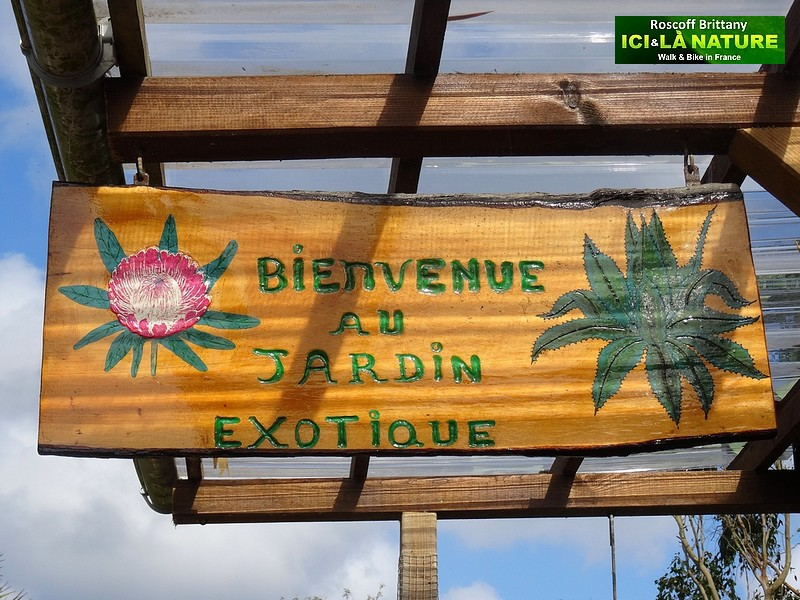 France – Brittany : The exotic Garden of Roscoff
